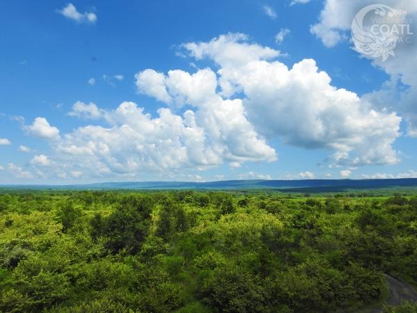 Sierra del Abra Tanchipa
